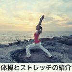 体操とストレッチの紹介